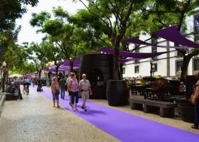 Festa do Vinho é um dos maiores eventos da Ilha da Madeira