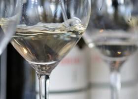 Invisível: o vinho branco feito de uvas tintas
