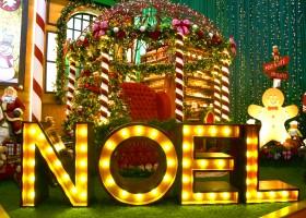"""Primeira edição da """"Noeland"""", o maior evento de São Paulo, acontece em Holambra, no Parque da Expoflora"""