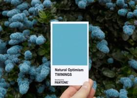 Otimismo Natural é a nova cor da Pantone