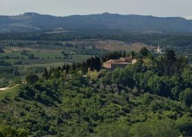 Palio de Siena mantém viva a tradição toscana