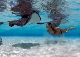 Cidade das Arraias atrai turistas para as Ilhas Cayman