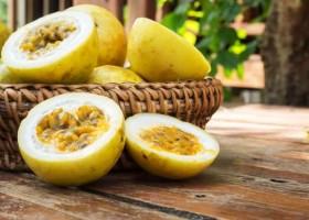 Além do efeito calmante: aprenda receitas saborosas feitas com Maracujá